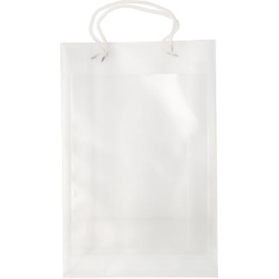 Image of A4 size polypropylene bag