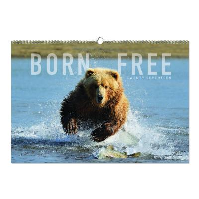 Image of Born Free Wall Calendar